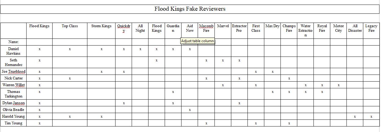 Fake Review Chart.png