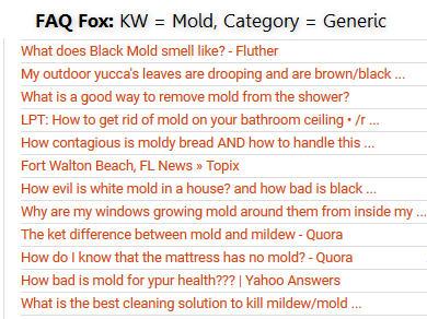 FAQFOXMold.jpg