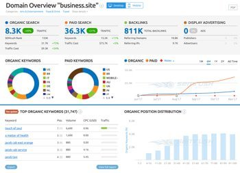semrush-business-site-domain-overview.jpg